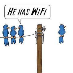 he has wi-fi